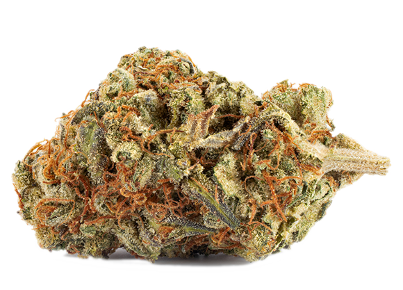 Try our High Seas organic flower
